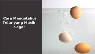 Cara mengetahui telur yang masih segar