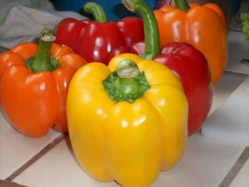 Bukan Jeruk Ini Makanan Dengan Vitamin C Paling Tinggi