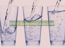 Diet air putih