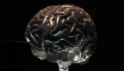 Mitos otak manusia