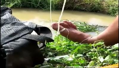 Cara membuat perangkap ikan dari botol