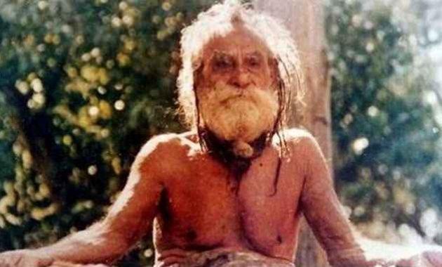 Manusia berumur panjang