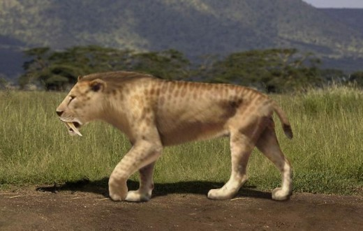 Hewan punah Smilodon