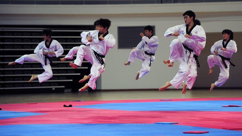Seni bela diri Taekwondo