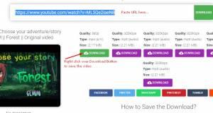 Download Video YouTube dengan Mudah